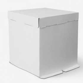 Коробка 300х300х300мм ЕВ300 белая